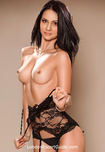 Paddington value Evodia london escort