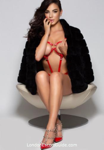 Bayswater elite Danielle london escort
