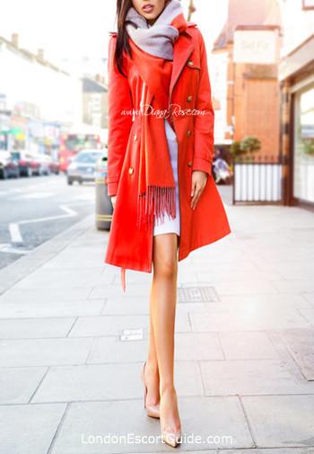 Marylebone brunette Diana Rose london escort