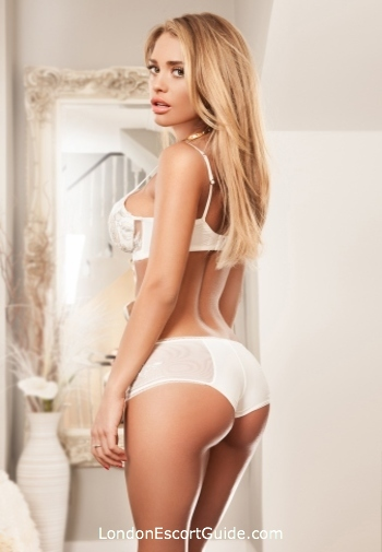 Gloucester Road 600-and-over Cameron london escort
